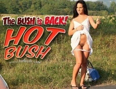 HotBush.com – SITERIP