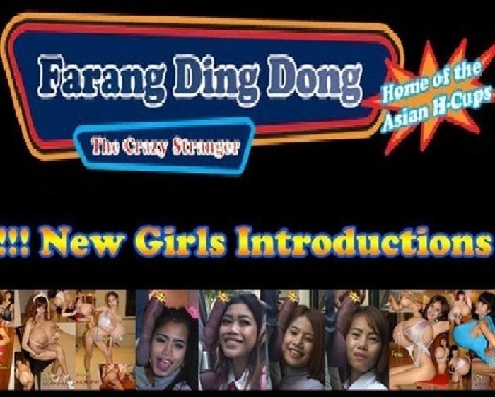 FarangDingDong.com – SITERIP